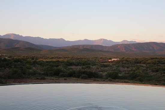 Rietfontein Ostrich Palace:                   The pool at dusk