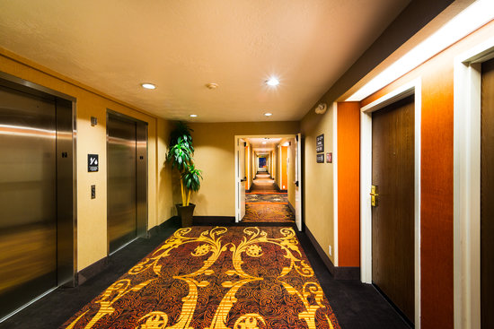 Hampton Inn St. George: Elevator area