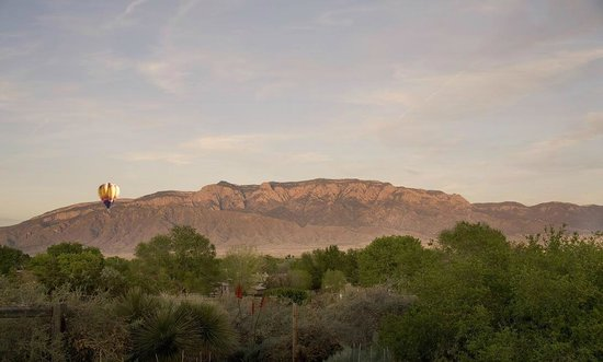 Corrales, NM: Hot Air Balloons can be seen regularly from the backyard of the Turtle