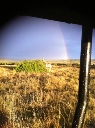 Amakhala Woodbury Tented Camp:                   On a game drive