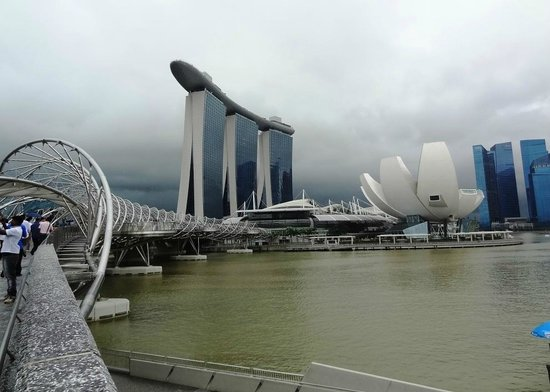 Pan Pacific Singapore:                                     This is the spectacular view from my room!