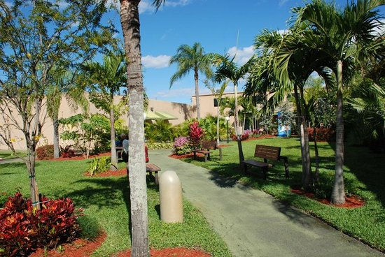 Rodeway Inn & Suites Fort Lauderdlale Airport/Cruise Port: Interior grounds