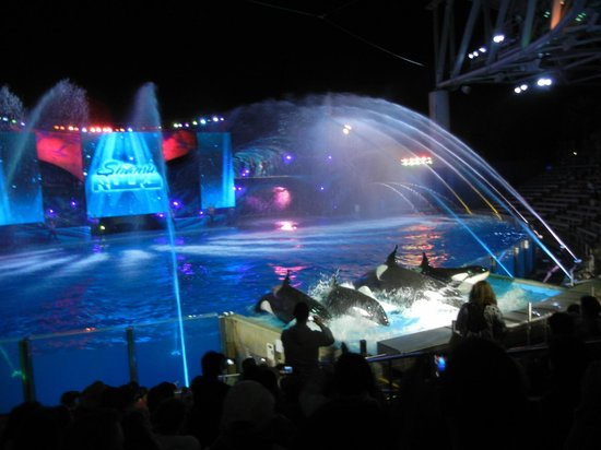 Photos of SeaWorld Orlando, Orlando