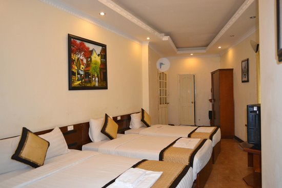 APT EZ Holidays Hotel:                   room hotel