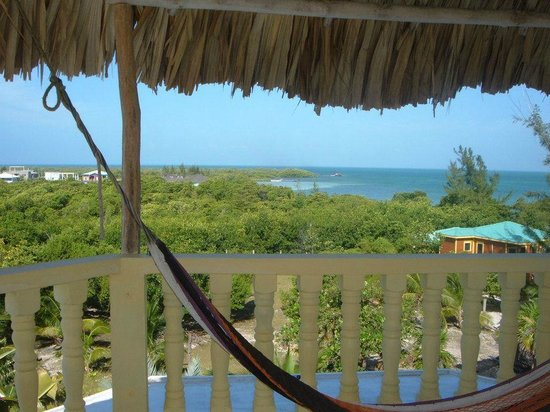 Lazy Iguana Bed and Breakfast:                   View from the top of Lazy Iguana