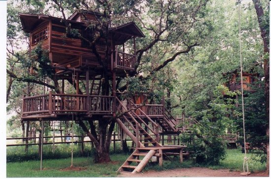 Cave Junction, OR: Swiss Fam Complex Treehouse