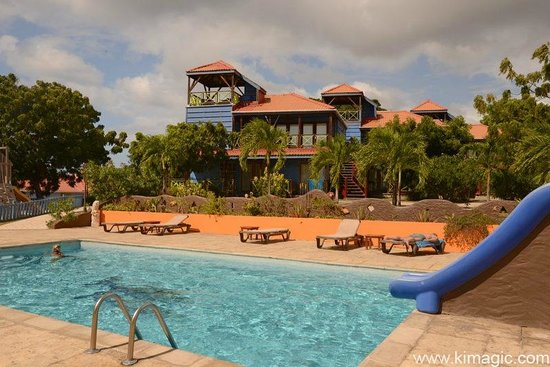 True Blue Bay Boutique Resort: Tower Suites and Swimming pool