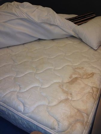 aloft Philadelphia Airport:                   Horrific stains - always check your mattress!