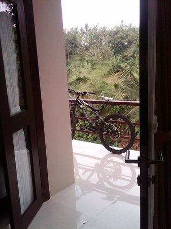 Beji Ubud Resort:                   view from the room