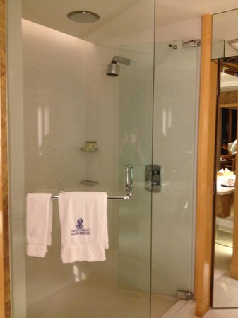 The Ritz-Carlton, Millenia Singapore:                   Shower