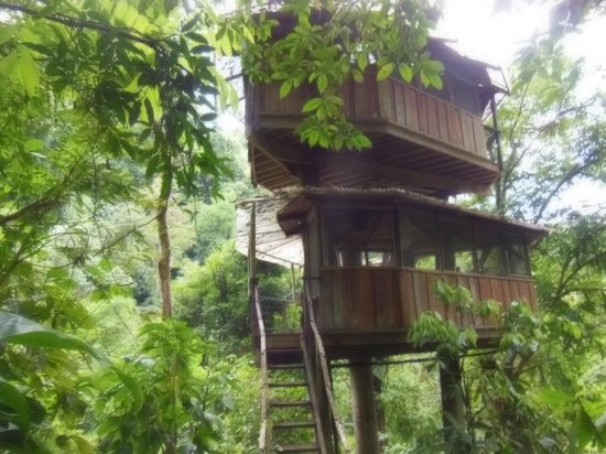 Finca Bellavista:                   The two story treehouse