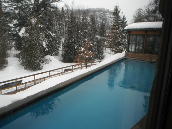Polar bear 39 s club piedmont quebec spa reviews for Club piscine quebec qc