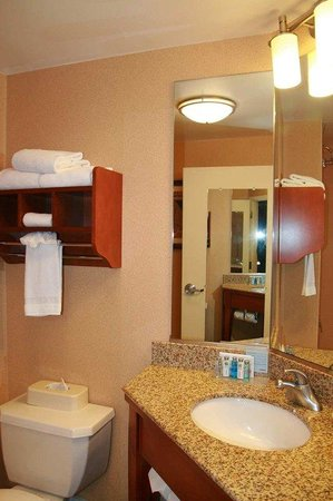 Hampton Inn Albuquerque - University / Midtown: Bathroom