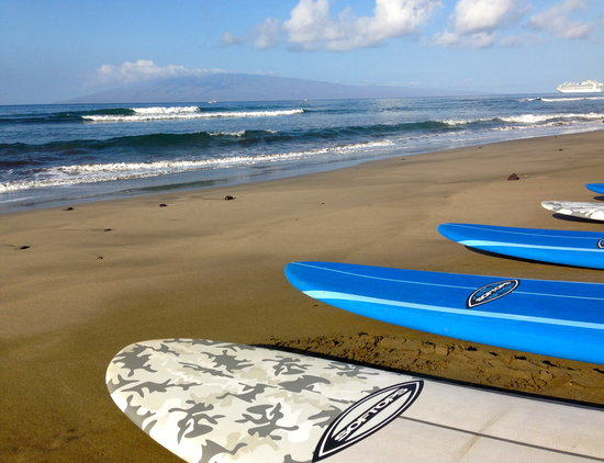 Paia, ฮาวาย: Waves rolling in and ready to start a private group surf lesson!