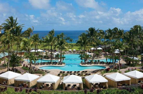 Ritz-Carlton, Kapalua: Pool