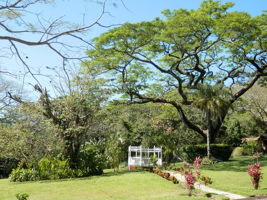 Hotel Borinquen Mountain Resort:                   Gartenanlage
