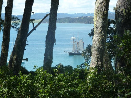 Paihia, New Zealand:                   into the wilderness