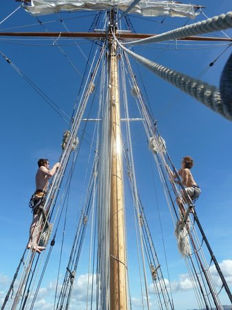 Paihia, New Zealand:                   Up the rigging you sea dog