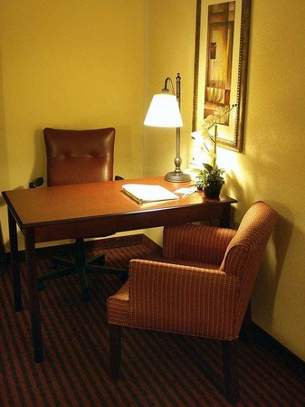 Hampton Inn & Suites - Opelika: Standard King Desk