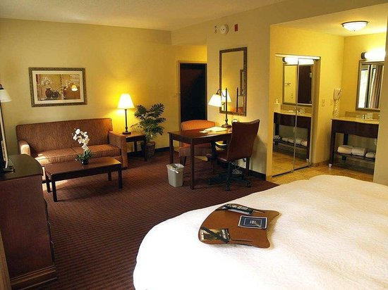 Hampton Inn & Suites - Opelika: King Studio Suite