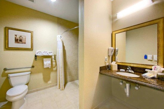 Hilton Garden Inn Abilene: Accessible Guestroom Bathroom