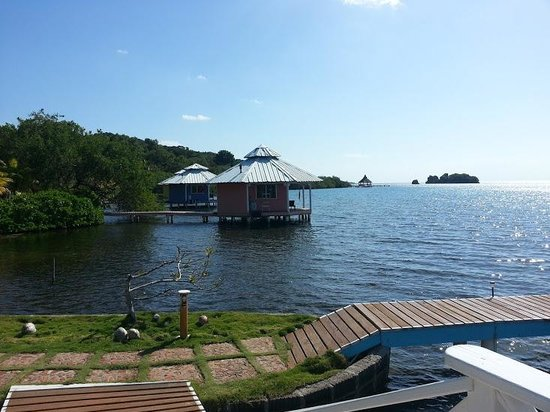 Mango Creek Lodge:                                     View from boathouse roof towards cabanas