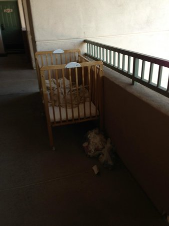 Scottsdale Resort & Athletic Club:                   carbage left in crib for 12 hours outside our door