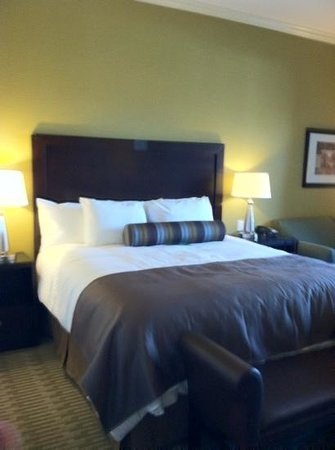 The Oaks Hotel:                                     very comfy bed & luxurious linens