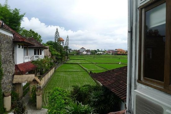 Tegal Sari:                   view from room second floor