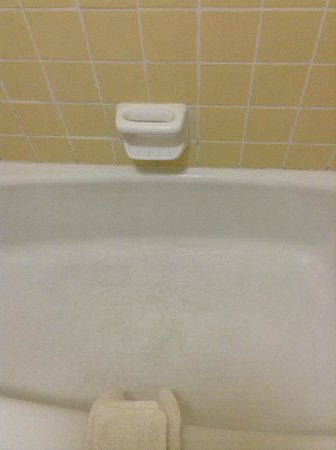 Quality Inn:                   Showing how dirty the tub was