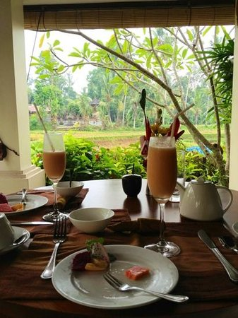 Villa Sabandari:                   breakfast overlooking the rice paddies