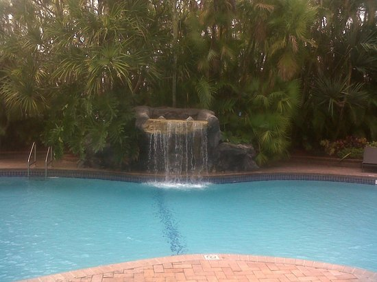 Holiday Inn Ft. Lauderdale Airport:                   water fall by pool