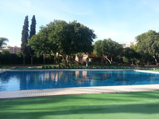 Hotel Atlas Asni:                   The pool garden