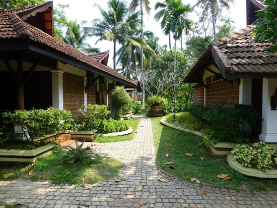 Punnamada Resort:                   So much green all around
