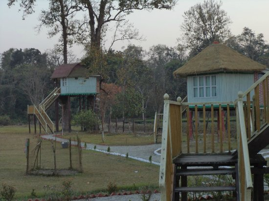 Gorumara Elephant Camp