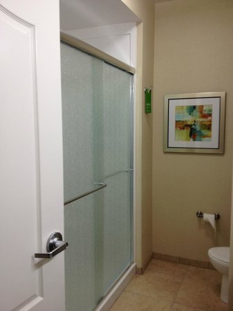 Hampton Inn & Suites: Large shower