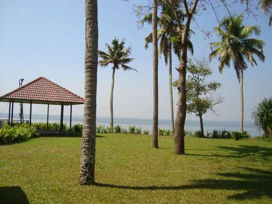 Edassery Kayal Resort:                                     A view from garden