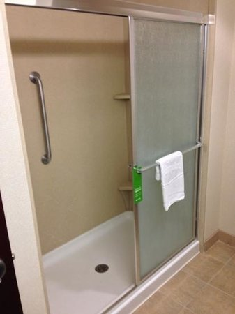 Hampton Inn &amp; Suites New Iberia: room shower, no bathtub (234)