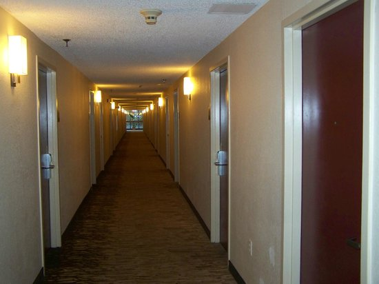 Red Roof Inn Miami Airport: couloir