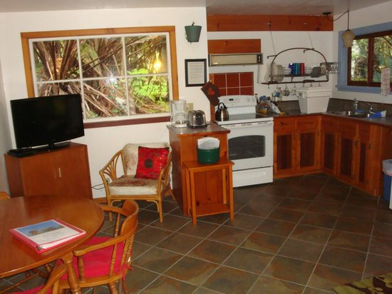 Volcano Guest House:                   Kitchen and living area.  There is a sofa and a single bed to the right.
