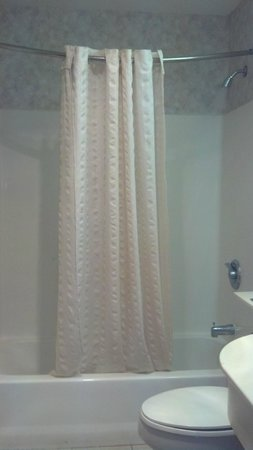 Microtel Inn & Suites by Wyndham Philadelphia Airport:                   due to the angle they mounted the shower curtain, this was as far as the curta