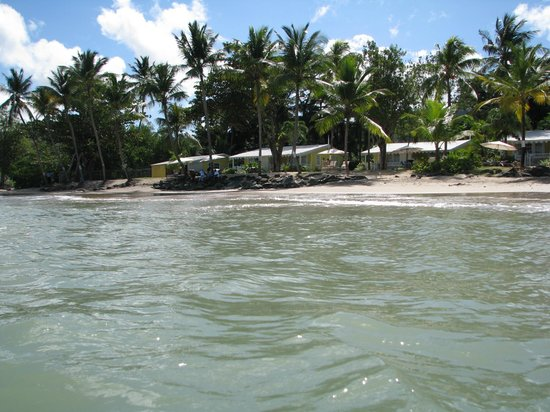 Rendezvous Resort:                   cottages view from the ocean