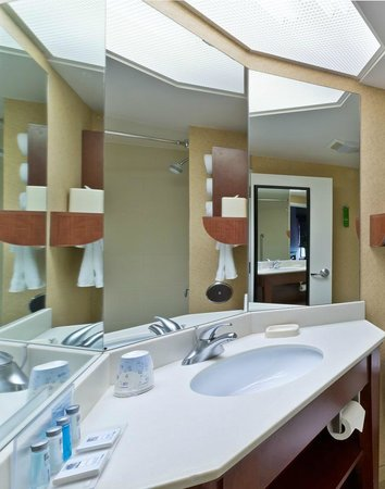 Hampton Inn Rockford: Guest Bathroom