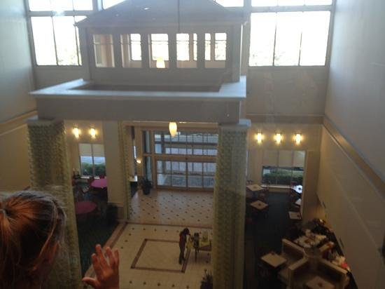 Hilton Garden Inn Dallas/Market Center:                   front entrance view from 6th floor