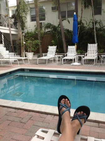 SoBeYou Bed & Breakfast:                   Poolside sanctuary