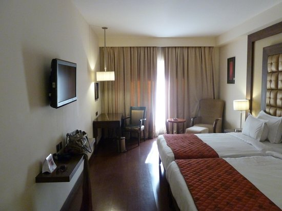 Cambay Grand Ahmedabad:                   roomview