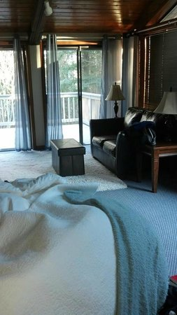 Anderson Creek Lodge :                                     Suite