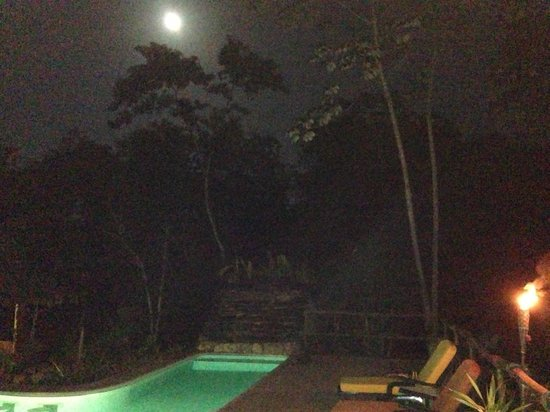 Mariposa Jungle Lodge:                   Dinner by the Pool