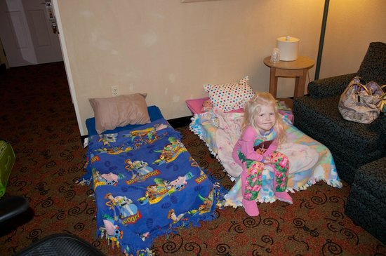 Holiday Inn Chicago-Tinley Park-Convention Center:                   We brought our own cots