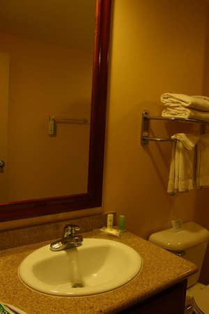 Comfort Inn Cockatoo Near LAX Airport: Clean bathroom